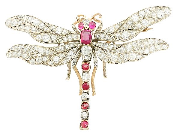 insect jewellery