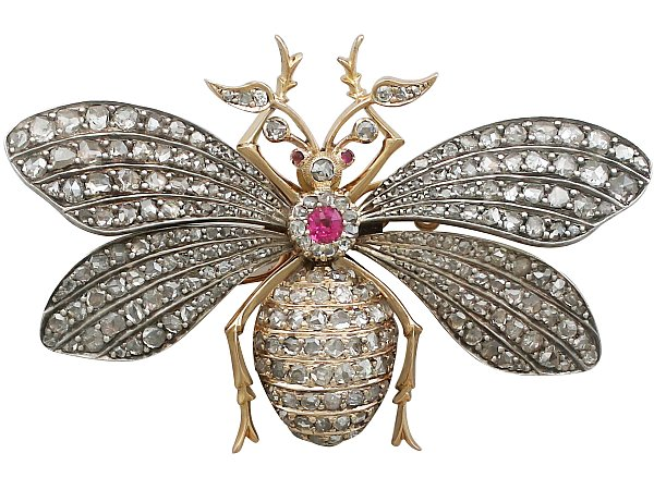 the history of insect brooches
