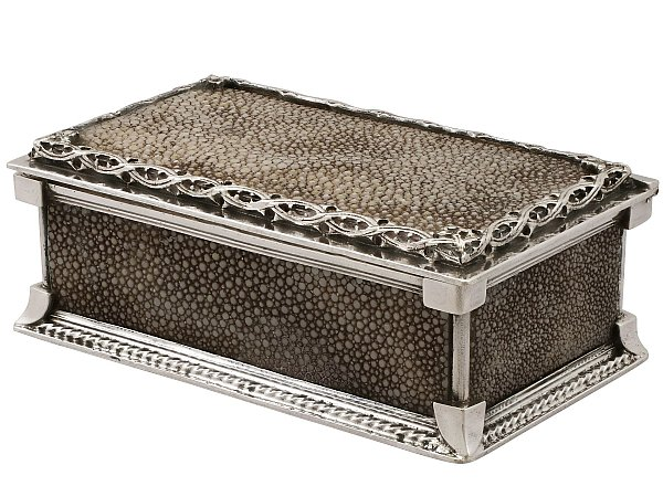 What is Shagreen?