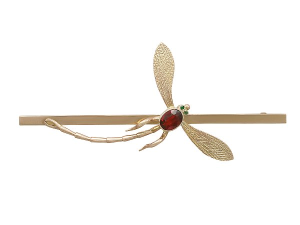 The History of Dragonfly Jewellery