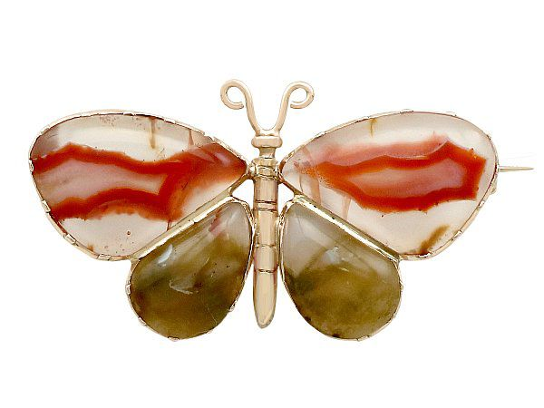 Butterfly jewellery meaning brooch