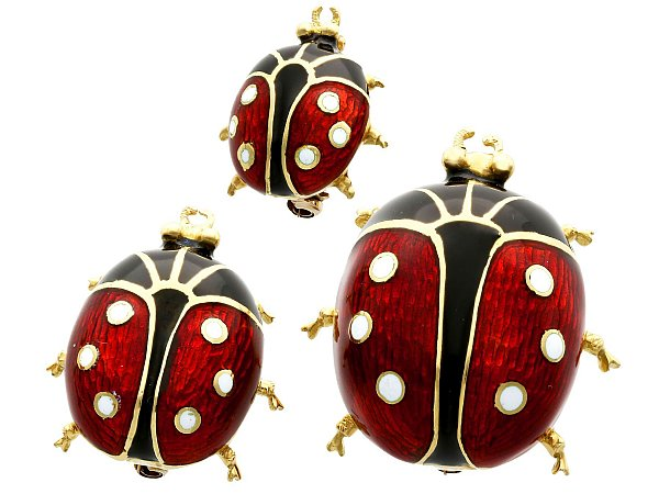 History of Insect Jewellery