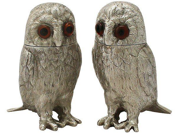Silver owl