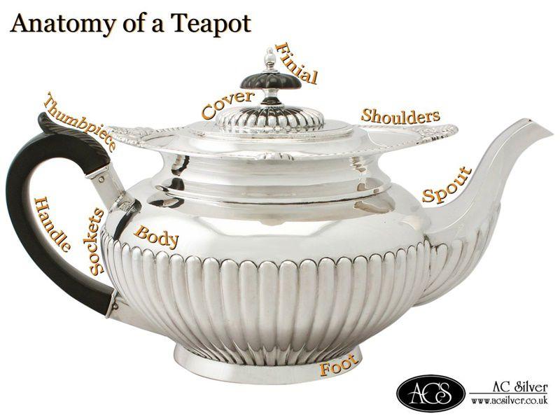 Teapot Anatomy